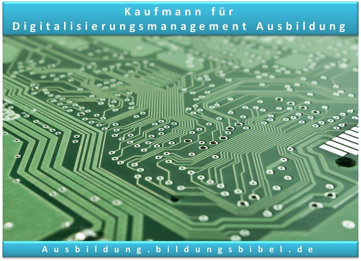 Ausbildung Kaufmann für Digitalisierungsmanagement bzw. Informatikkaufmann, Info zu Voraussetzungen, Dauer, Inhalt, Gehalt, Stärken, Bewerbung, Ressourcen und Video.